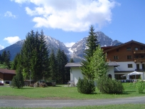 Tyrol, AT, when the trees try to grow bigger than the mountains